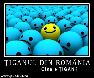 Tiganul din Romania